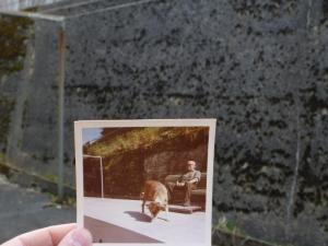 Photoprojekt März 2014 (34) (800x600)